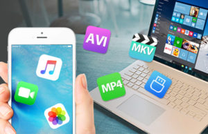 winx mediatrans review